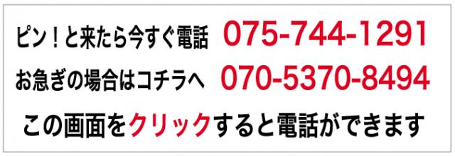 ピン!と来たら今すぐ電話  075-744-1291